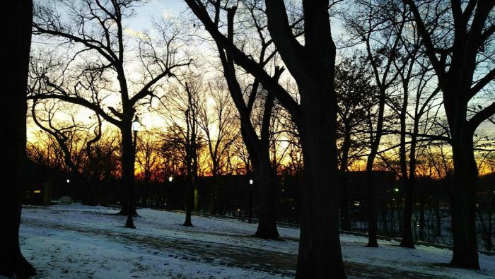 sun set winter beyond film school